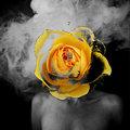 Ian Curtis Wishlist // PrettyFacesSplitOpen image