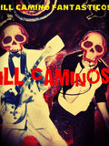 The iLL CaMiNoS image