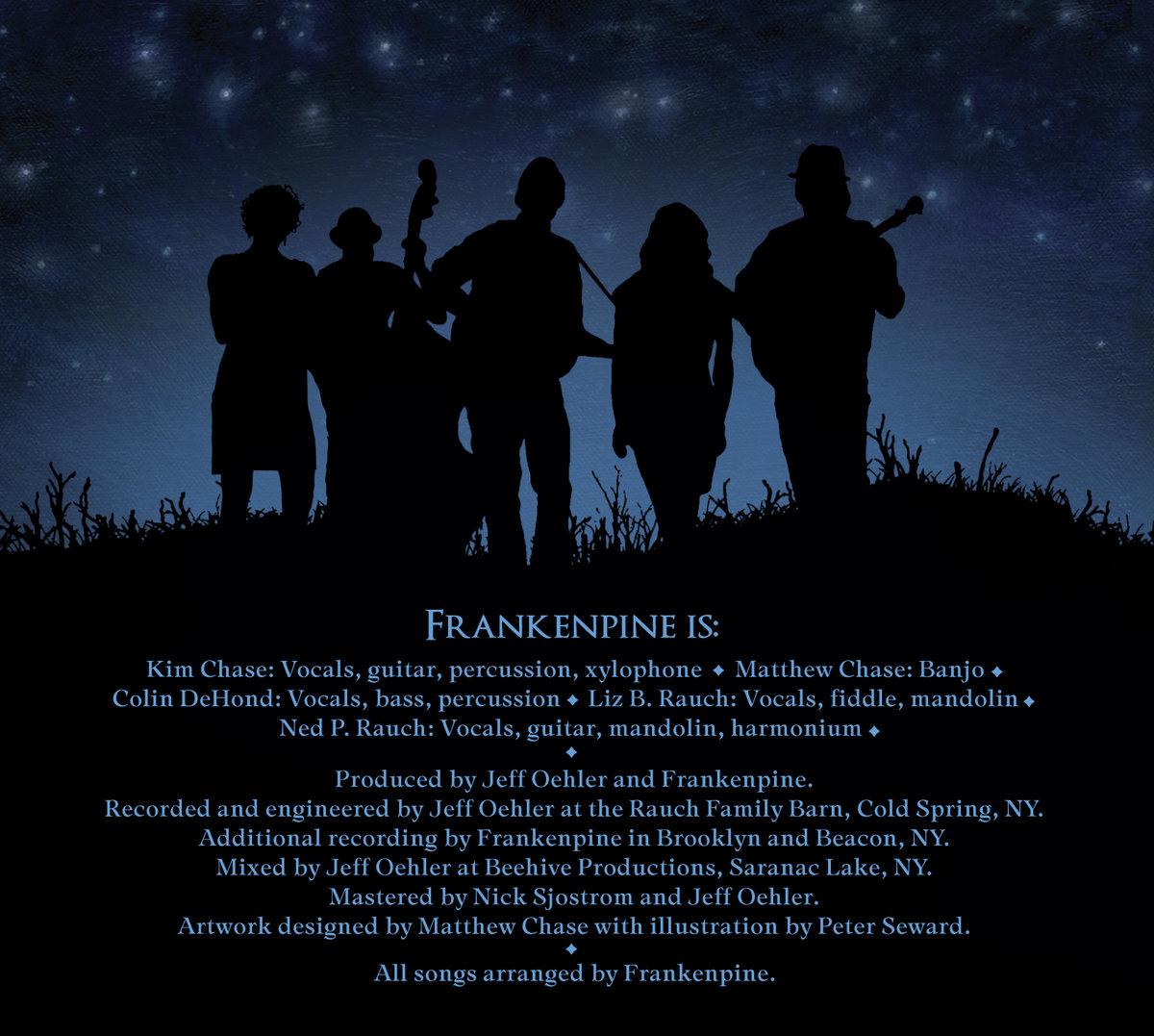 Anything That Shines | Frankenpine
