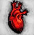 The Heartsleeves image