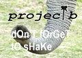 project b image