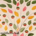 Middleton Hall image