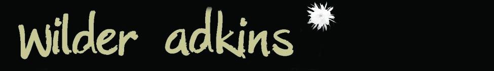 I Have Decided   Wilder Adkins