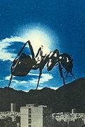 BLACK ANT image