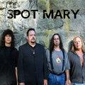 Spot Mary image