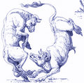Two Bulls image