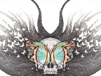 Butterfly Revolutions Poster main photo