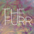 The Furr image