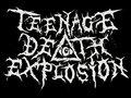 Teenage Deathexplosion image