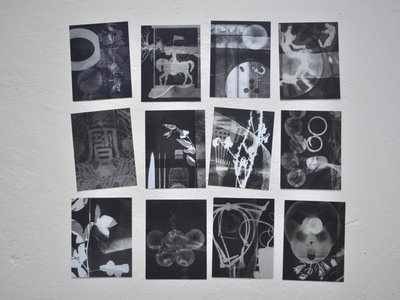 Ape Delay Photograms postcard set main photo