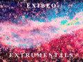 Exibeo image