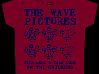 Stay Here And Take Care Of The Chickens t-shirt main photo