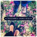 Tradewinds Sailing Club image