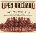 Open Orchard Revival image