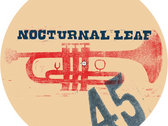 """Nocturnal Leaf CPV-1300 Limited Edition 7"""" Vinyl photo"""