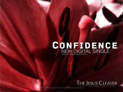 """Confidence"" Postcard main photo"