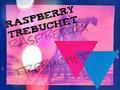 Raspberry Trebuchet image