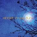 Hidden in the Sun image