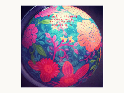 Plastic Flowers - Karaoke Files main photo