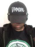 Vince Vandal image