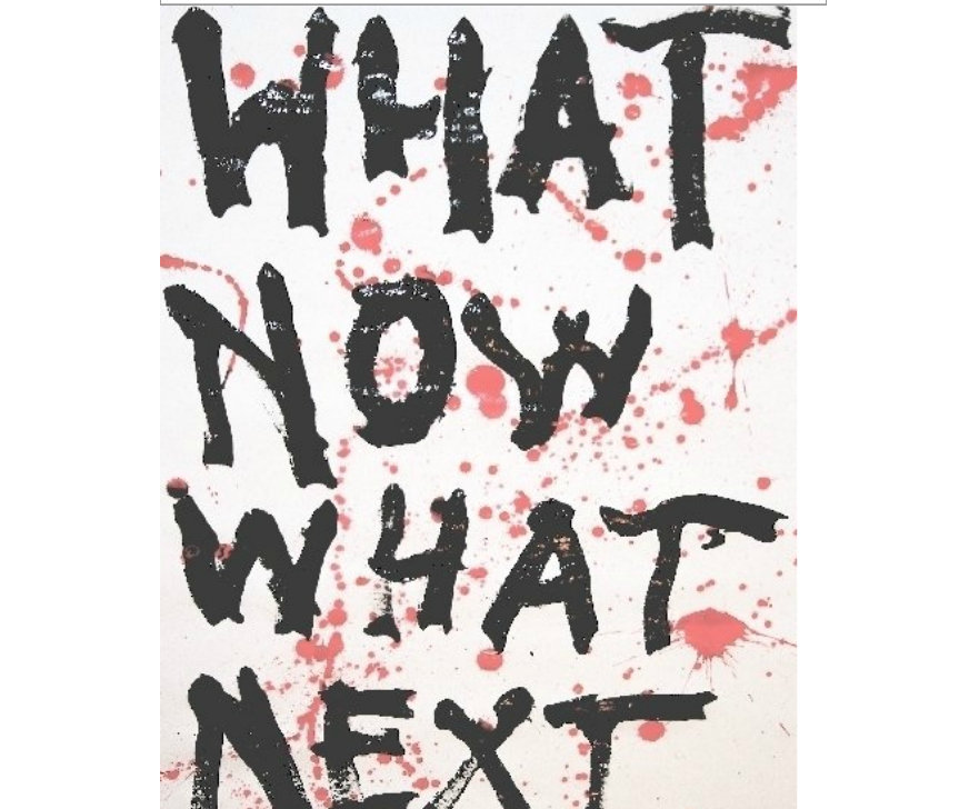 What Now What Next by Tony Kapel (Book) | Pocket Of Lollipops