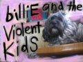billiE and the violent kidS image