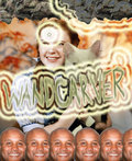 WANDCARVER image