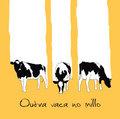 Outra vaca no millo image