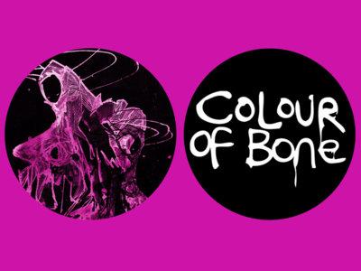 Colour Of Bone Badge Set main photo