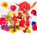 Blusher image