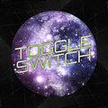 Toggle Switch image