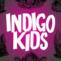 Indigo Kids image
