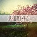Promises image