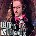 Rey Muerto image
