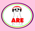 are Discos image
