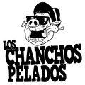 Los Chanchos Pelados image