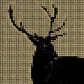 Native Deer image