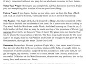 Our Lady of Grace - Marian Card [25 Cards] photo