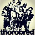 thorobredmusic image