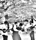 Magpie String Band image