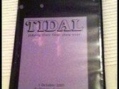 TIDAL's farewell concert 2005 photo