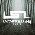 Underslung Audio image