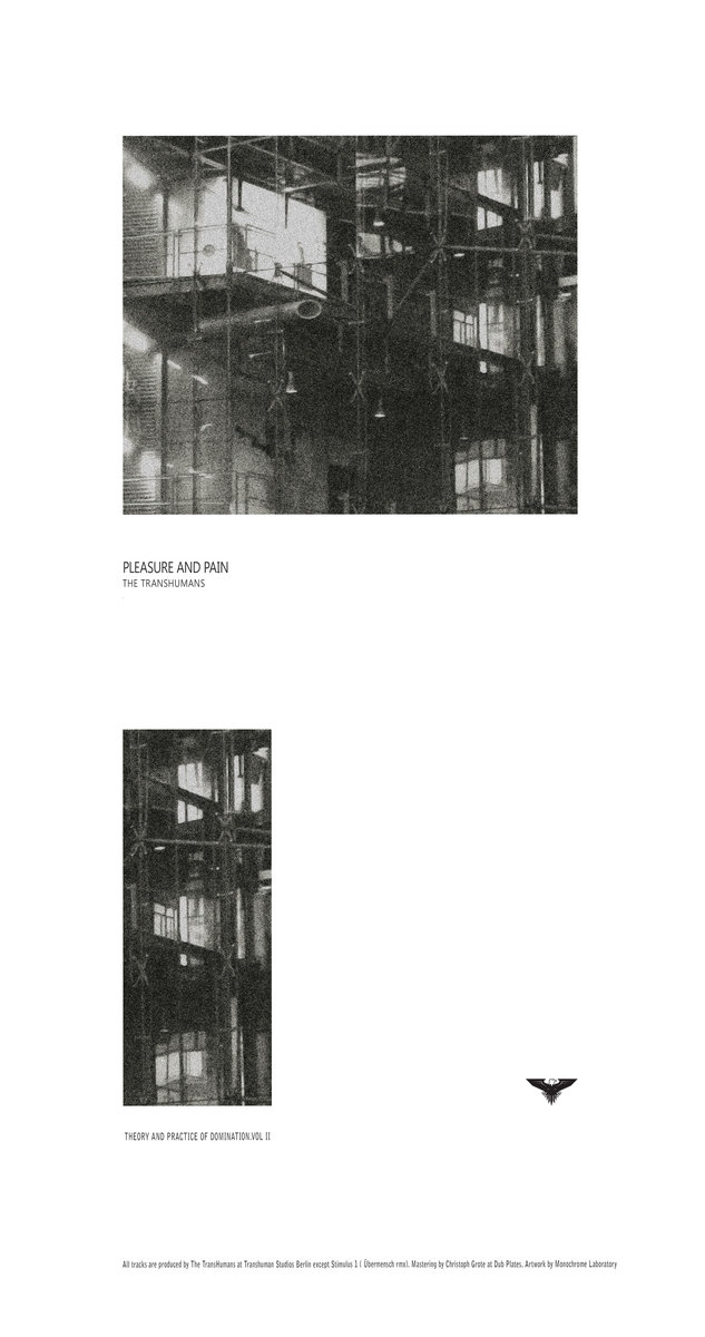 II Limited special edition 100 copies in a classy bendable sleeve/poster.  Includes unlimited streaming of Theory and practice of Domination Vol. lI  Pleasure ...