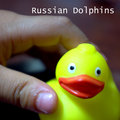Russian Dolphins image