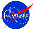 The Coconauts image