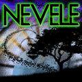 Nevele image