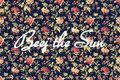 Beej the Sun image