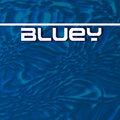 Bluey image