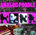Analog Poodle image