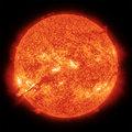 Microscopics image